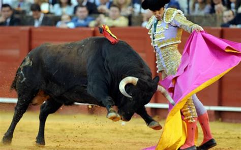 View Bull Fighting in Spain - reviews, best time to visit