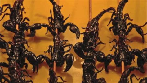 Eating Scorpions in Thailand